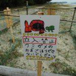 海亀の卵の看板