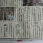 新聞で松林の再生の記事