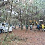 松林の整備
