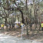 7月松林整備