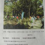 第2回松林の整備