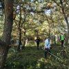 第3回松林の整備