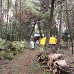 第3回松林整備