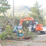 第5回松林の整備