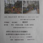 2月松林整備