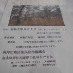 3月松林の整備