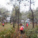 第4回松林整備